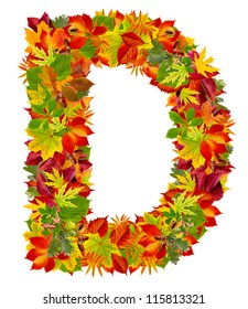 D, autumn alphabet isolated on white