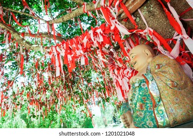"""Da Lat, Vietnam - March 26 2014: The famous """"Love tree"""" on Mong Mo Hill in Love valley in Da Lat, Vietnam. There to couples are offered a chance to write notes of wishes and pin them to the tree."""