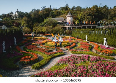 Da Nang, Vietnam - February 26, 2019: Tourist visiting a floral garden with many kind of colorful flower in Ba Na Hills mountain resort, Da Nang, Vietnam.