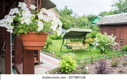 Dacha and plot of land. People rest at the dacha, grow flowers and vegetables.