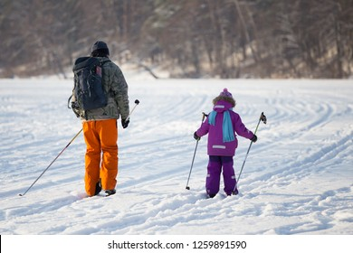 Dad and daughter go cross-country skiing. View from the back. Sunny day. In the background is a forest.