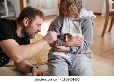 Dad and daughter play with pet guinea pig