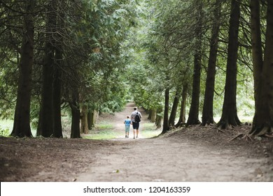 Dad and son on a walk in the autumn forest. Family walking in nature, park or outdoors on sunny autumn day.