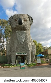 DADSWELLS BRIDGE, AUSTRALIA - April 10, 2016: The Giant Koala (1989), located on the Western Highway, Victoria, is 14 metres high and weighs 12 tonnes. It is made of bronze and set on a steel frame
