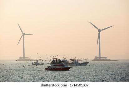Daebu Island, Ansan-si, Gyeonggi-do, Korea - March 8, 2020: Tourists on a cruiseship surrounded by seagulls with the background of wind power plants