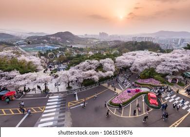 Daegu, South Korea - April, 2018:  Sunset of Daegu E-World and Daegu city in springtime.