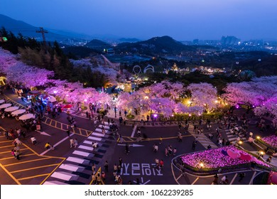 Daegu, South Korea - April, 2018: Night view of Cherry Blossom festival at Daegu E-World.
