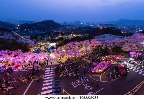 Daegu South Korea April 2018 Night Stock Photo (Edit Now ...