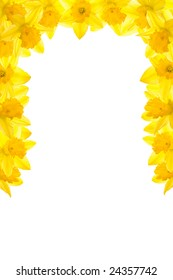 Daffodil border, vertical partial surround