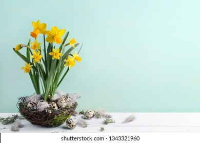 Daffodil flower and easter eggs in nest,copy space for your text.
