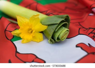 Daffodil and leek on Welsh flag
