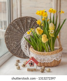 Daffodils in  basket, quail eggs and decorative birds on background braided circle. Easter decoration window.
