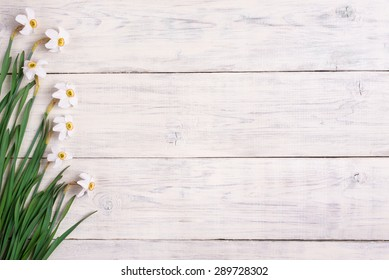 Daffodils flowers on wooden background, copy space