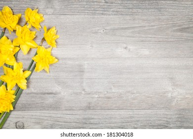 daffodils on grey table (copy space)