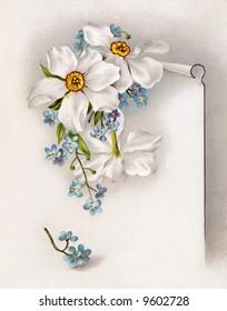 Daffodils Stationary - a circa 1890 vintage illustration