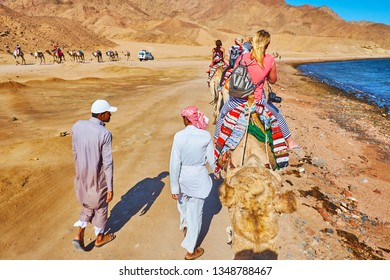 DAHAB, EGYPT - DECEMBER 16, 2017: The cameleers accompany the camel train, slowly walking along the coast of Aqaba gulf with a view on Sinai desert and another tourist caravan, on December 16 in Dahab