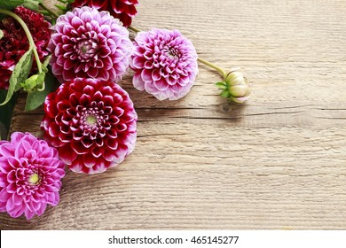 Dahlia flowers on wooden background, copy space.