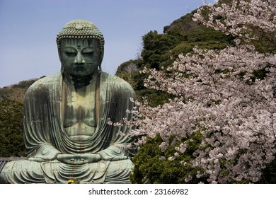 """The Daibutsu (""""Large Buddha"""") in Kamakura in spring with cherry blossoms"""