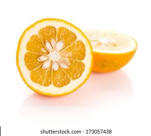 Daidai, Asian variety of bitter orange (which is also known as Seville orange, sour orange, bigarade orange, and marmalade orange)