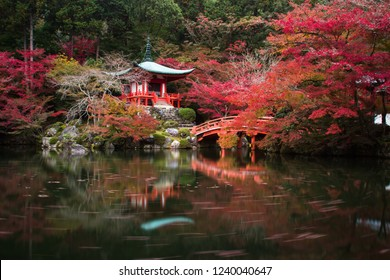 Daigoji Japanese Buddhism temple is The world heritage site with many leaf colorful maple trees during autumn leaves in Kyoto, Japan