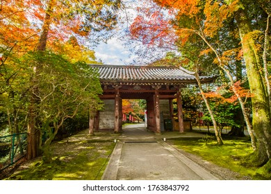 Daigoji temple gate in autumn.