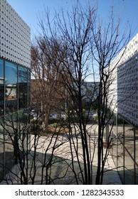 Daikanyama building design