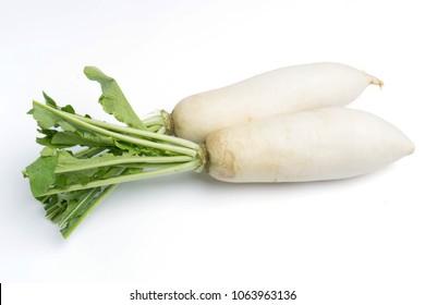 daikon radishes isolated on white background