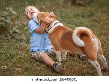 The daily life of a child with disabilities. A boy with Down syndrome plays with dogs. Chromosomal and genetic disorder in the baby.