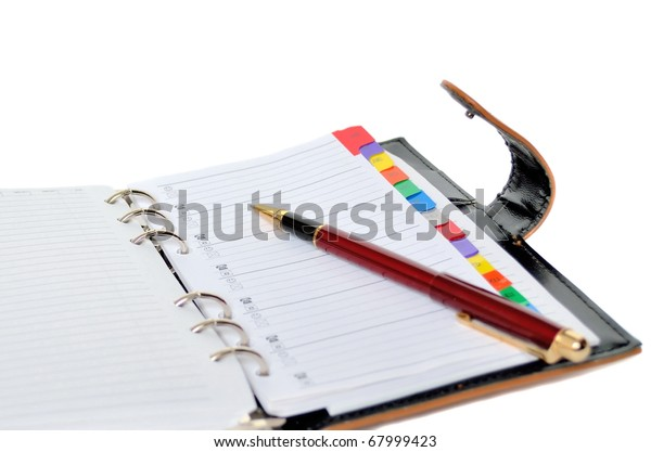 Daily planner with pen
