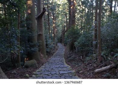 Daimon slope of Kumano Kodo pilgrimage routes in Wakayama, Japan