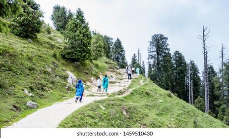 Dainkund Peak, Dalhousie, Chamba, Khajjiar, Himachal - 21 July, 2019 - Way to Dainkund Peak and Pohlani Devi Temple