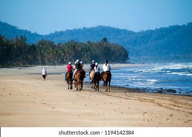 DAINTREE, QUEENSLAND, AUSTRALIA - 24 AUGUST 2011: Horse riding tour group riding along the tropical Daintree Beach in Far North Queensland.