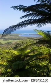 The Daintree River and coastline from Mt Alexandra Lookout in Queensland, Australia