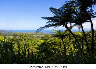 The Daintree River and coastline from Mt Alexandra Lookout in Tropical North Queensland, Australia