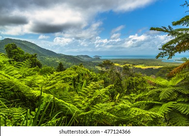 Daintree tropical rainforest stormy sky Coral sea barrier reef north Queensland lookout