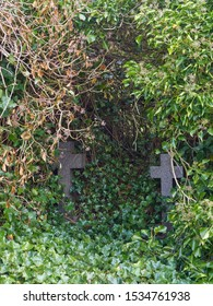 Dairsie, Scotland - 11th May 2018: Two Granite Crosses marking Graves, lie hidden under overgrowing vegetation at the ruins of Forgan Church in Fife, Scotland.