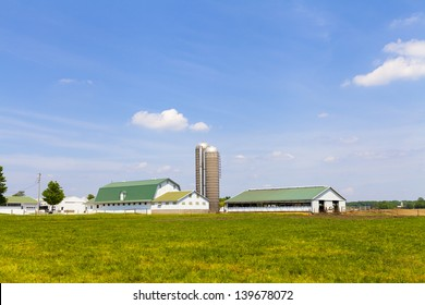Dairy Farm With Blue Sky