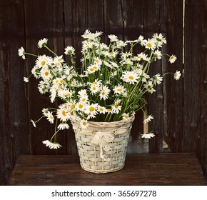 Daisies in a basket on wooden background