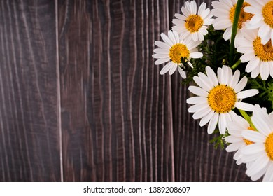 daisies bundle  on wooden background