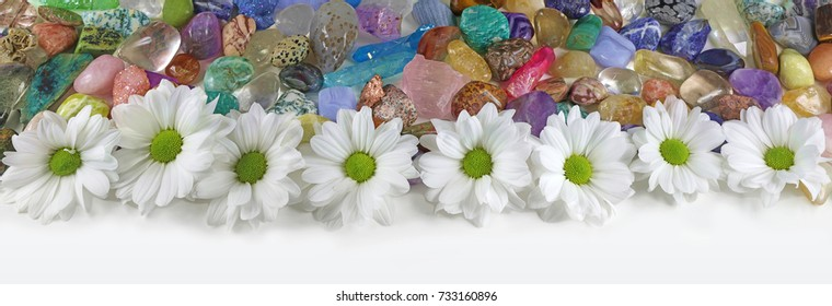 Daisies and Healing Crystals Banner - a row of white daisies in from of a random mix of tumbled healing stones of all colors ideal for a website header