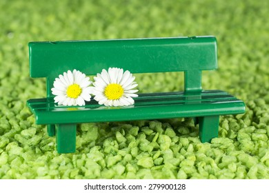 Daisies on green bench