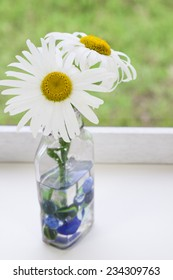 Daisies in vase with blue marbles with room for copy space.