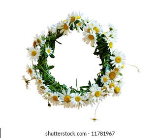 daisies wreath