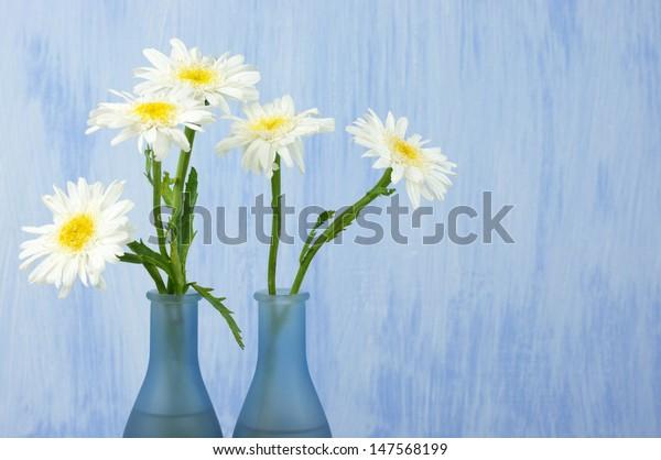 Daisy bouquet in vase on grunge background.