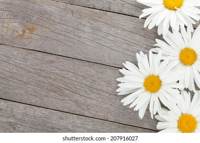 Daisy camomile flowers on wooden table background with copy space