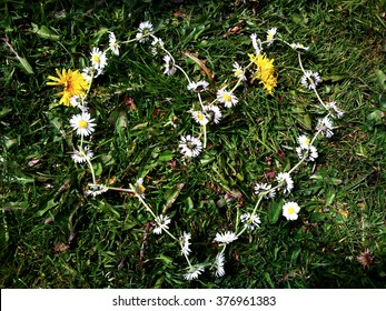 A daisy chain arranged in a heart shape placed on green grass.