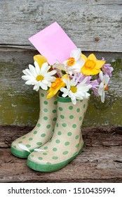 daisy and daffodil bouquet with blank pink envelope in green polka dot boots on rustic wood