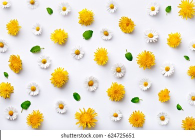Daisy And Dandelion Pattern Flat Lay Spring Summer Flowers With Green Leaf On A