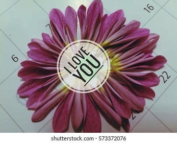 daisy flower calendar background. frame of 14 date , Valentine day. focus on i love you.