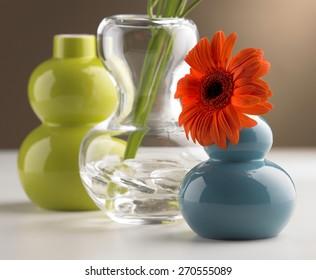 daisy in flower vases